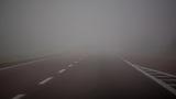 FORECAST: Dense Fog Advisory in place through Wednesday morning