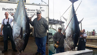 North Carolina man reels in massive 800-pound bluefin tuna