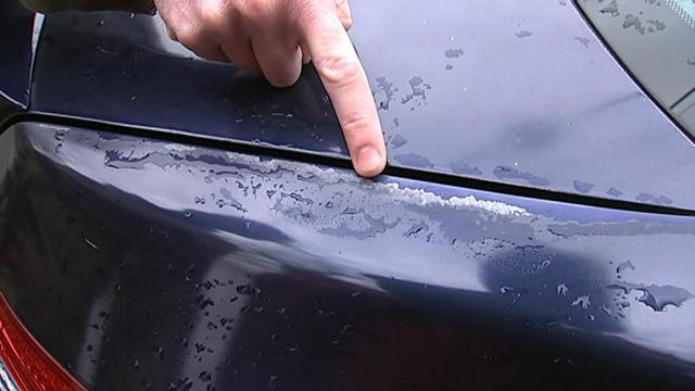 Honda Paint Recall >> Honda Paint Recall Auto Guide