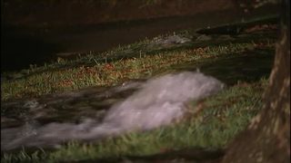 IMAGES: Water main break shuts down part of Myers Park road