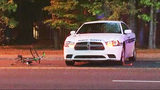 IMAGES: Bicyclist struck by public safety… - (6/10)
