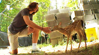Fawn still recognizes Davidson County teen after lake rescue