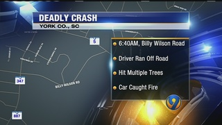 Driver dies after car crashes into trees, catches fire in York Co.