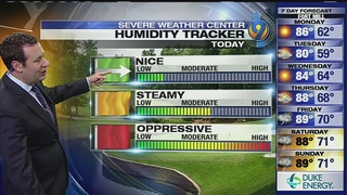 FORECAST: Dry weather pattern in place as humidity dips