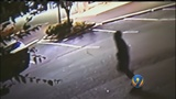 Burglar caught breaking into cars shoots at church members