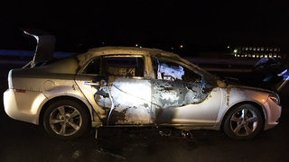 Suspected arsonist tries to set himself on fire after police chase