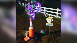 #CONEWEED: Unusual holiday attraction helps local families in need