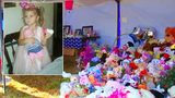 Remains positively identified as 3-year-old NC girl, DA says