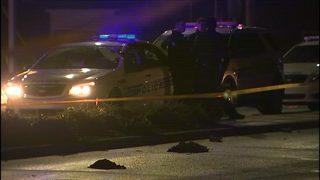 Pedestrian struck, killed on The Plaza