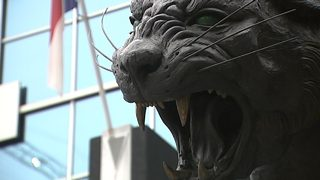 Panthers raise single-game ticket prices
