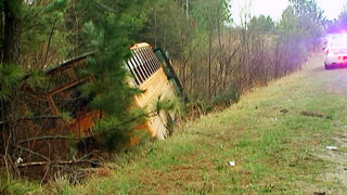 Driver crashes school bus into woods trying to avoid deer, officials say