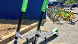 Scooters to return to Charlotte streets