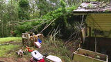 Strong storms topple trees, knock out power to thousands
