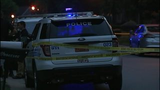 6-year-old girl, 2 dogs wounded in north Charlotte shootings, police say
