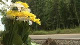 Roadside memorial for Meck. Co. girls killed 23 years ago 'not maliciously uprooted,' mother says