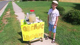 Outpouring of support for 9-year-old boy robbed at lemonade stand