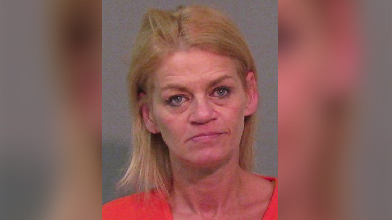 PET SITTER STOLE FROM FAMILY: Pet sitter accused of stealing