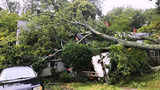 Reporter Mark Barber's Sunday live report from Holly Ridge