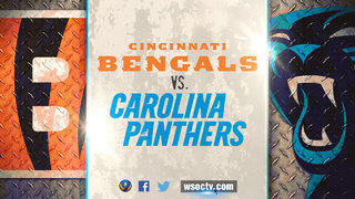 Bengals join Panthers in wearing One Carolina stickers