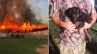 Dog rescue owner says deadly fire could
