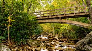 FALL FOLIAGE: Vibrant colors on display across the NC mountains