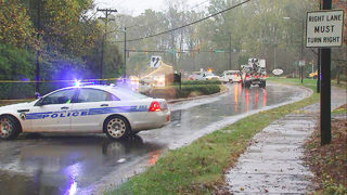 Fallen tree limbs knock out power, close Archdale Road in south Charlotte