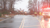 1 dead after tree crashes on car in Matthews