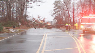 Man dies, wife injured after tree crashes on car in Matthews