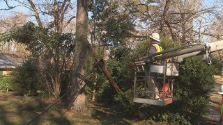 Mint Hill residents hit hard after tree downs 5 power poles during winter storm