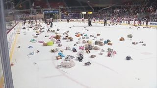 Teddy Bear Toss at Checkers game provides toys for children in need