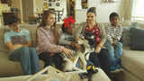 Dog returned to NC family after being stolen, disguised for nearly 4 years