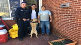 Video, tips lead to police finding Lenoir man's stolen puppy