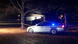 Deputies investigating after 2 men found shot to death in Alexander Co. home