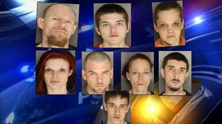 8 arrested after deputies find drugs, weapons, stolen puppies inside Lancaster Co. home