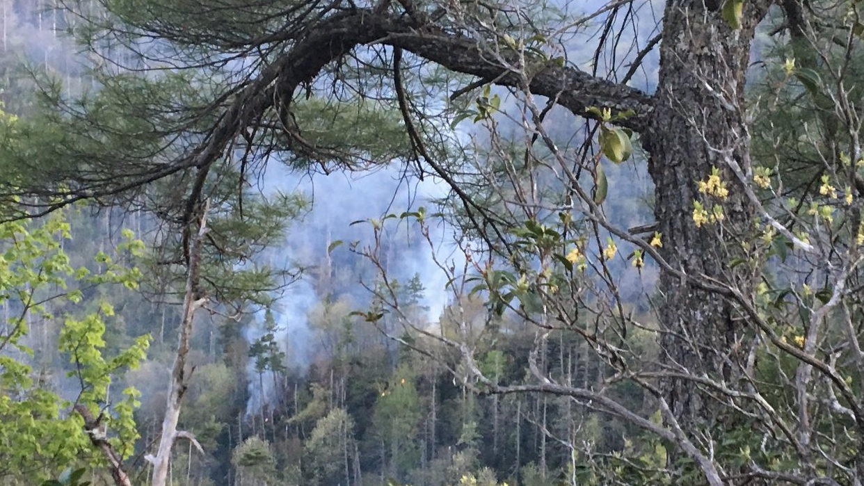 LINVILLE GORGE FIRE: Fire blamed on abandoned campfire reported in