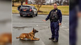 Officer Jordan Sheldon and K-9 Ramon