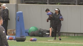 Panthers first female coaching intern back for a second season