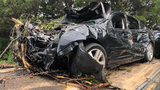 Man authorities say was looking for his phone hits two trees, has car catch on fire