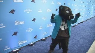Photos: Blue carpet rolled out uptown for premiere of 'All or Nothing: Carolina Panthers