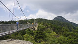 The swinging bridge at Grandfather Mountain