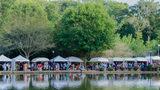 Festival in the Park (Tom Schellin)