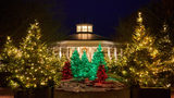 Holidays at the Garden at Daniel Stowe Botanical Garden